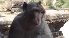 Angkor Wat Day 2 6