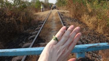 Bamboo train 18