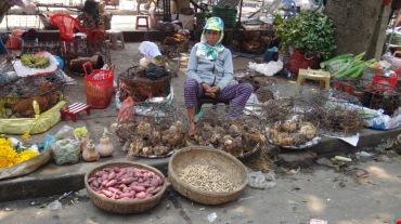 Vietnam 5 Hoi An Mar 17-25 2016 -- 509 market