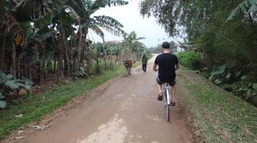 Vietnam 7 Phong Nha Mar 29-Apr 1 2016 - Biking - 18