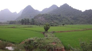 Vietnam 7 Phong Nha Mar 29-Apr 1 2016 - Biking - 20