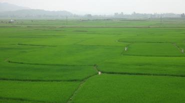Vietnam 7 Phong Nha Mar 29-Apr 1 2016 - Biking - 9