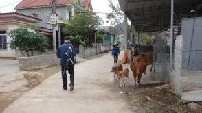 Vietnam 7 Phong Nha Mar 29-Apr 1 2016 - Kids - 2