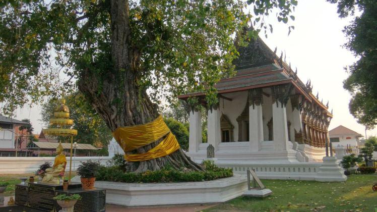 Thailand 2 Ayutthaya April 25-28 2016 -- 188