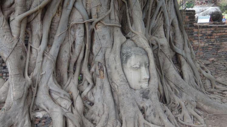Thailand 2 Ayutthaya April 25-28 2016 -- 36