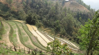 Vietnam 9 Sapa April 9-13 2016 -- Tour1 -- 12