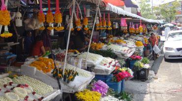 Thailand 3 Chiang Mai May 1-7 2016 -- 180
