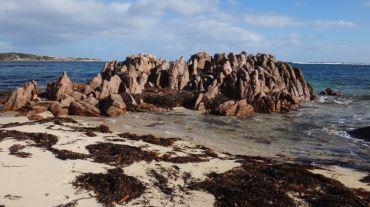 Australia Perth June 16-27 2016 - 327