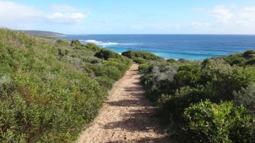 Cape to Cape Trail (135 km)