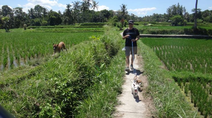 indonesia-ubud-bali-starting-june-28-2016-1235