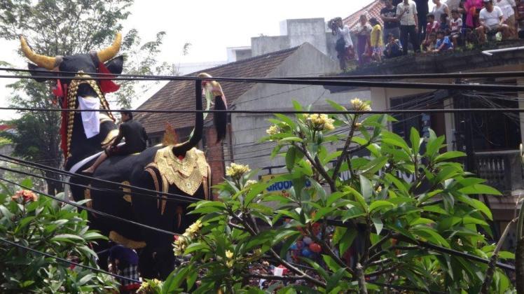 Ubud Bali Cremation (24)