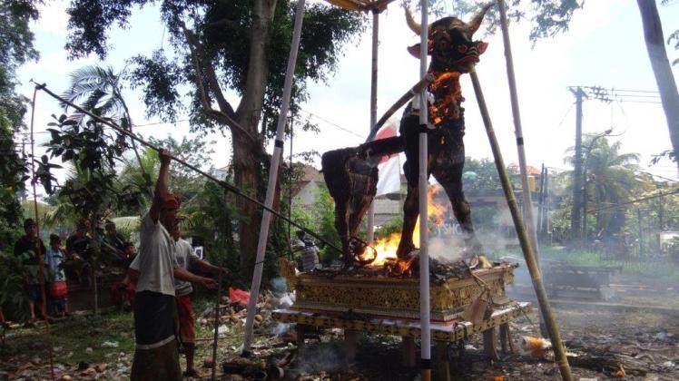 Ubud Bali Cremation (4)