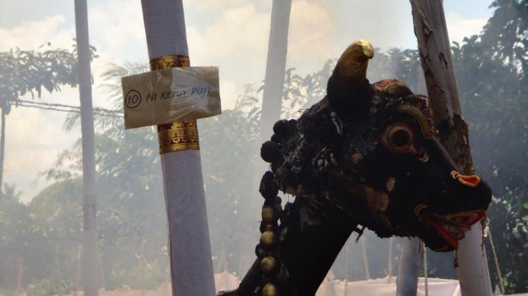 Ubud Bali Cremation (7)